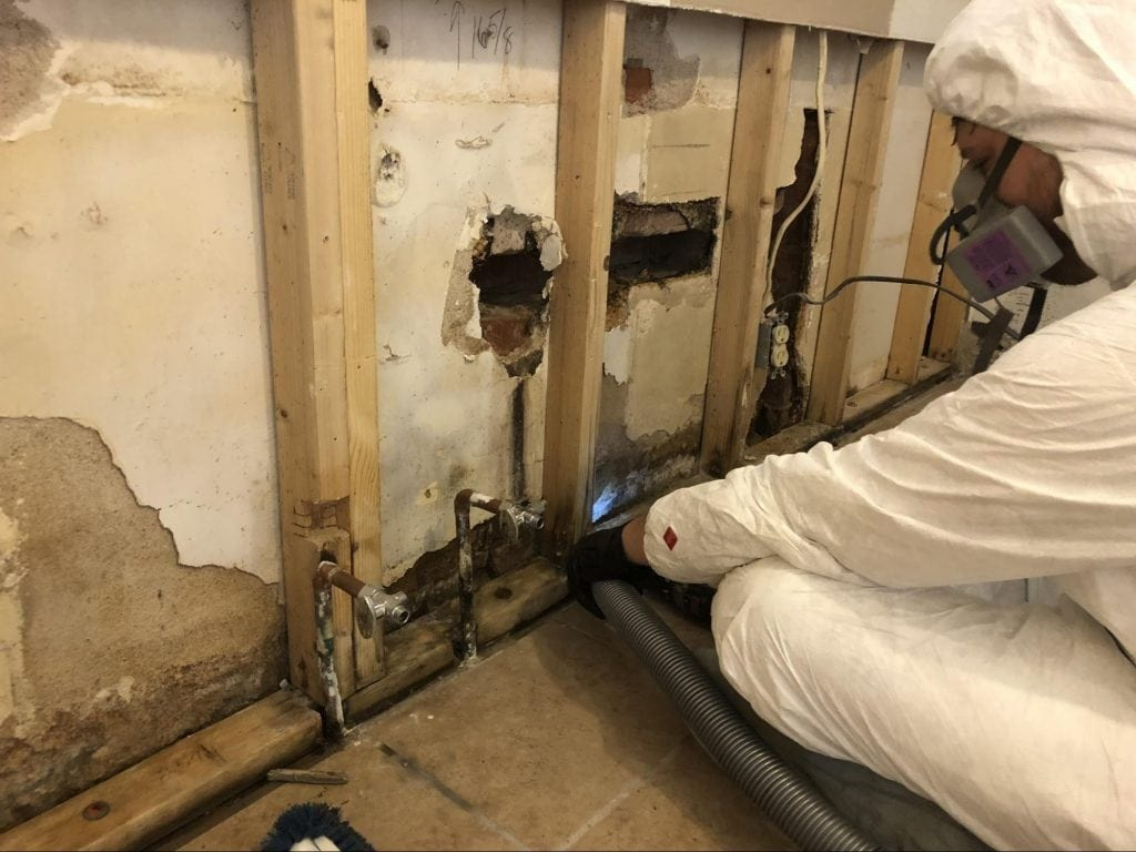 Water Damage Cleanup & Mold Remediation in Tucson